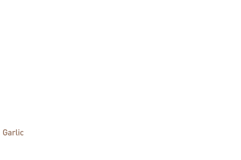 Origin of Kyochon